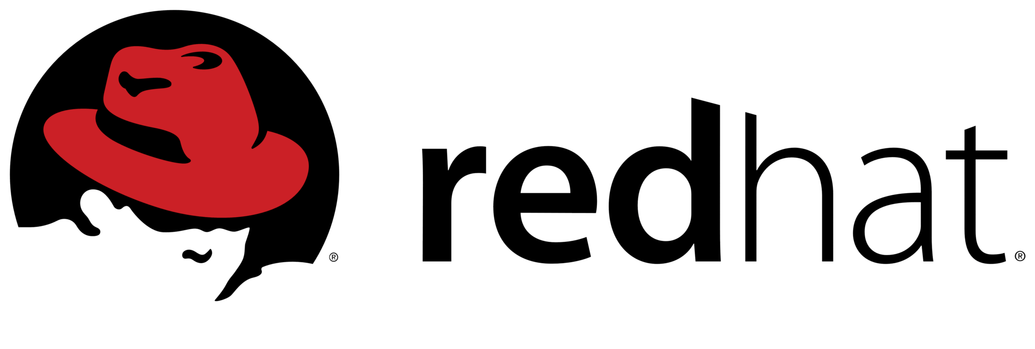 SEP sesam Red Hat Virtualization Data Backup | SEP USA